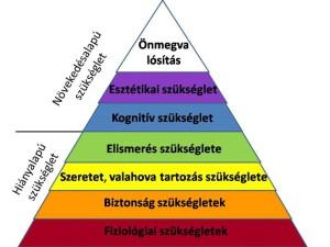 nyelv